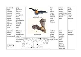 bats prompt sheet.docx