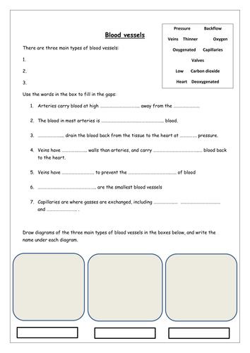 All Worksheets » Mathland Worksheets - Free Printable Preeschool ...