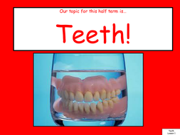 Teeth Term 2B (PowerPoint).pptx