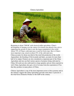 Chinese Agriculture.doc