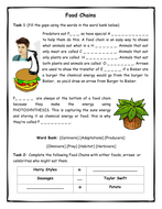 Food Chains Introduction