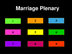 lesson 8. marriage plenary.ppt