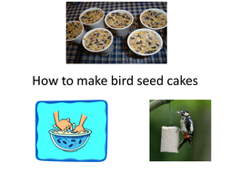 How to make bird seed cakes