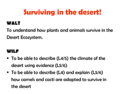 Adaptions to survive in the desert