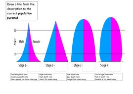 population pyramid.docx