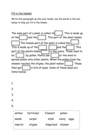 Parts of a plant fill in the gaps.docx