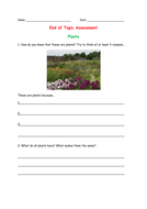 End of Topic Plants Assessment
