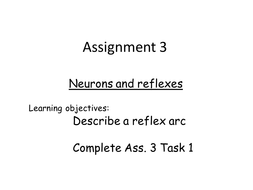 BTEC Unit 10 Ass. 3 Neurons lesson and resources