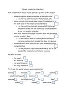 Ass 2 Task 1b Burger completion help sheet.docx