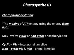 1.3.4 Photosynthesis final.pptx