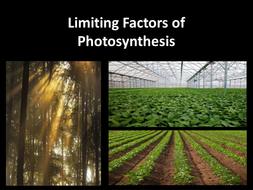 A2 Respiration & Photosynthesis
