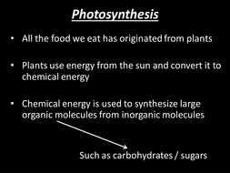 1.3.1 Photosynthesis Introduction.pptx