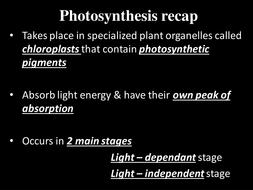 1.3.2 Photosynthesis recap.pptx