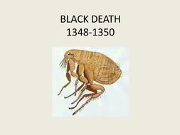 Black Death 1348-1351