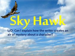 Sky Hawk Lesson 1.pptx