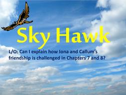 Sky Hawk Lesson 5.pptx