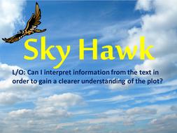 Sky Hawk Lesson 6.pptx