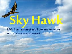 Sky Hawk Lesson 2.pptx