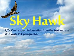 Sky Hawk Lesson 10.pptx