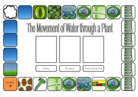 water through plant board game.doc