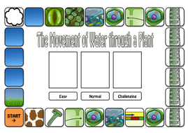 water through plant board game.pdf