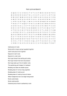 Rock Cycle Wordsearch