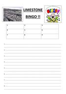 Bingo sheet.docx