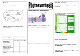 Photosynthesis revision sheets