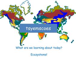 Ecosystem Services Lesson 1.pptx